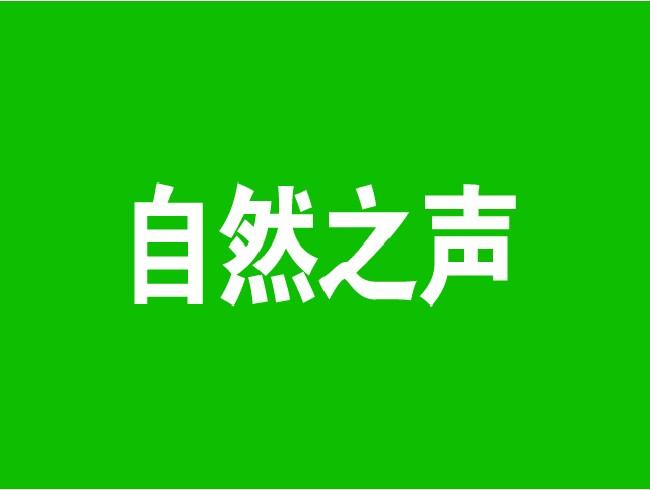 社区免费听力测试服务活动-双井街道广外南